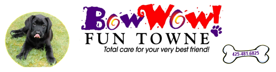 Bow Wow Fun Towne